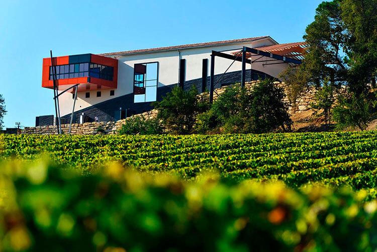 A view of the modern tasting room that juts out from the winery as seen from the vineyard at Château La Croizille