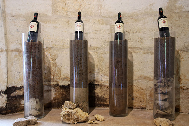 Four tall glass vases filled with rocks, sand and soil to represent the terroir from the Neipperg family's vineyards