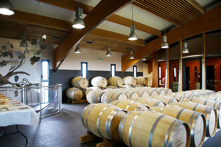 A sculpture of a grape vine made out of metal is among the French oak barrels in Château La Croizille's barrel room