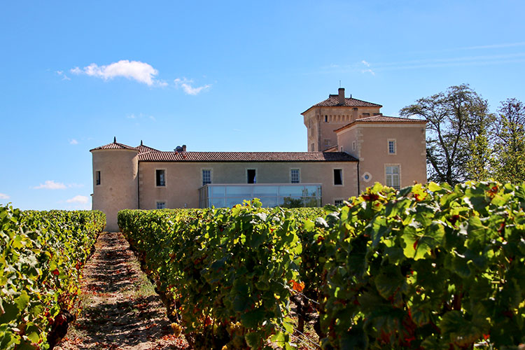 The chateau seen through the vines from the vineyard at Chateau Lafaurie Peyraguey in Sauternes