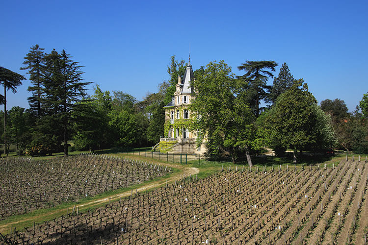 The view of the vineyard and 19th century château from the rooftop of the winery at Château Les Carmes Haut-Brion