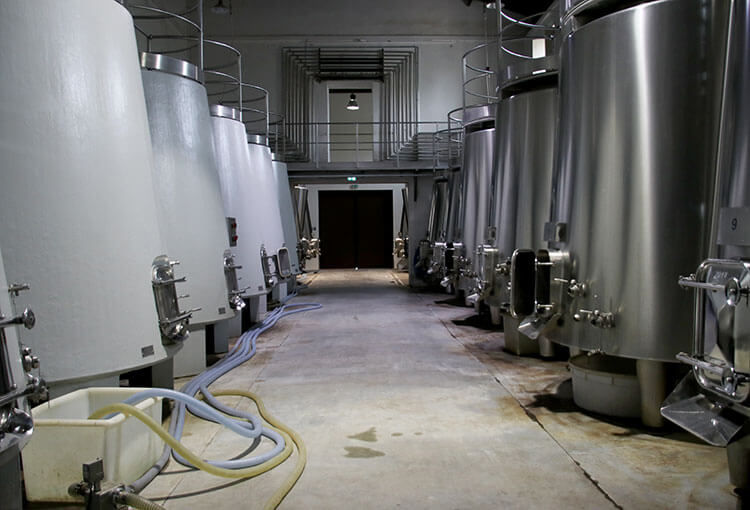 Concrete tanks line the left of the vat room and stainless steel tanks line the right of the vat room at Chateau Marquis de Terme
