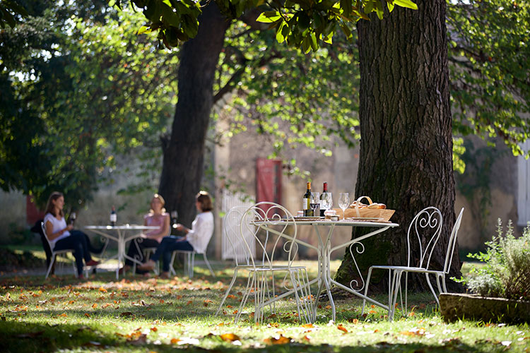 A table is set with the picnicwith wine and local fruits and products in the shade under the magnolia trees at Château de Cérons