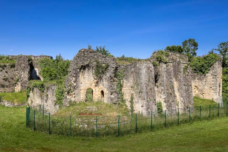 The now ruined Château des Rudel with vines climbing over and through the ruins at the Citadelle de Blaye