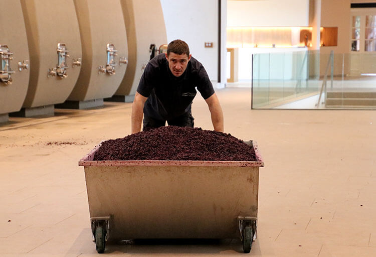 A worker pushes a tub of pomace that has just been shoveled out of the vats at Château Cheval Blanc in Saint-Emilion