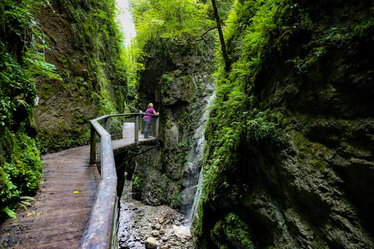 Jennifer walks along the elevated wooden walkways surrounded by a moss and lichen covered narrow gorge at the Gorges de Kakuetta